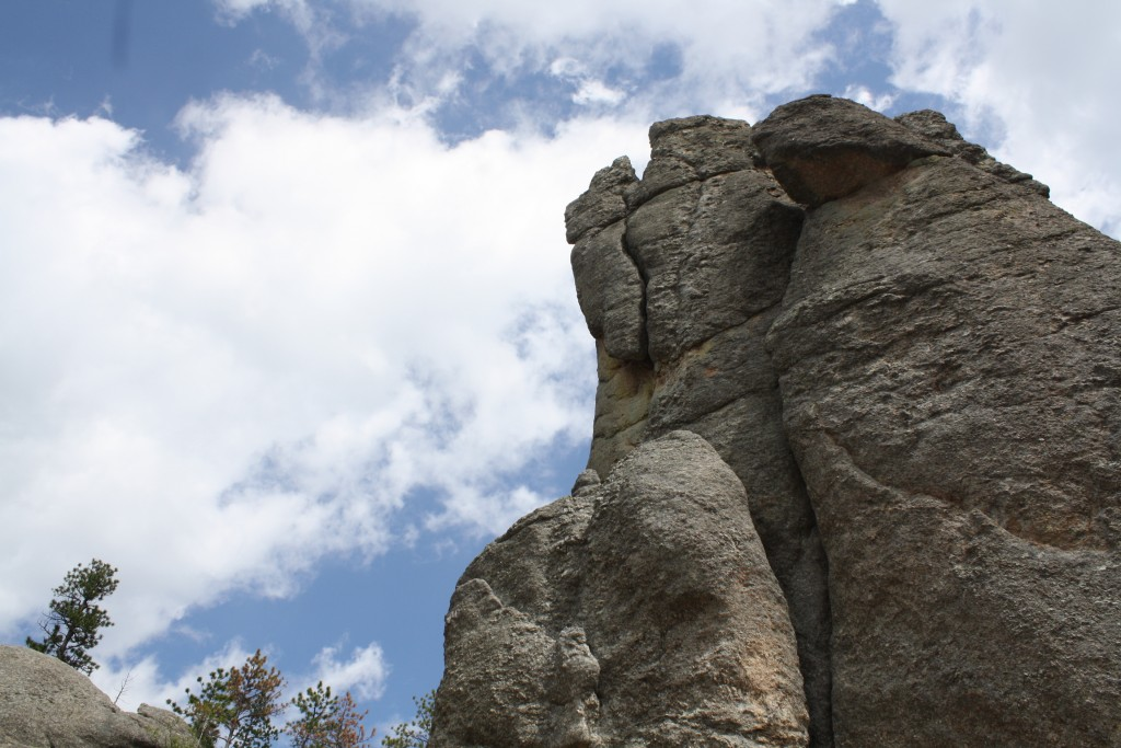 Custer State Park 3