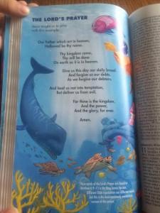Under The Sea 4